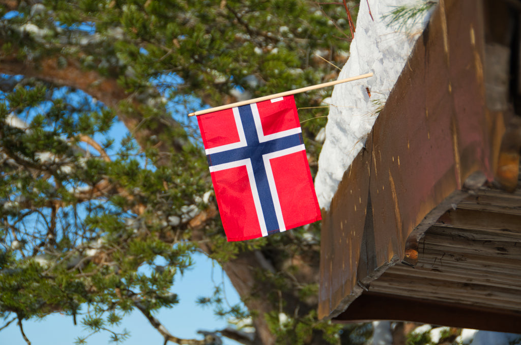 Norwegian flag in a snowy cabin roof