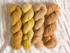 Mendip 4-Ply – Naturally Dyed Set 10