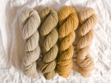 Load image into Gallery viewer, Mendip 4-Ply – Naturally Dyed Set 11