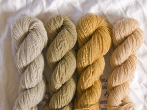 Mendip 4-Ply – Naturally Dyed Set 11