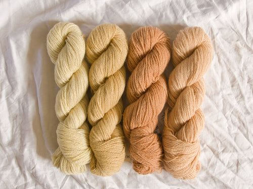 Mendip 4-Ply – Naturally Dyed Set 12