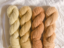 Load image into Gallery viewer, Mendip 4-Ply – Naturally Dyed Set 12