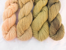 Load image into Gallery viewer, Mendip 4-Ply – Naturally Dyed Set 1