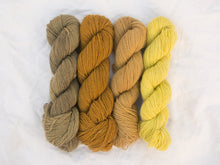 Load image into Gallery viewer, Mendip 4-Ply – Naturally Dyed Set 3