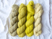 Load image into Gallery viewer, Mendip 4-Ply – Naturally Dyed Set 8