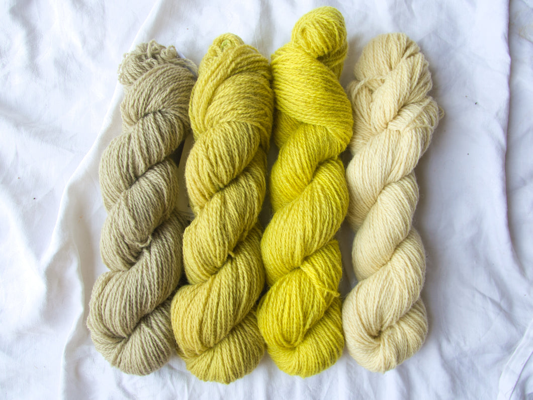 Mendip 4-Ply – Naturally Dyed Set 8