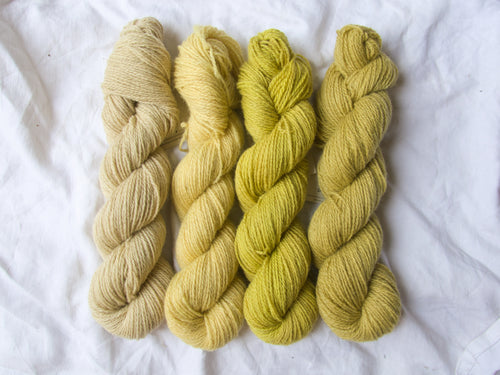 Mendip 4-Ply – Naturally Dyed Set 5
