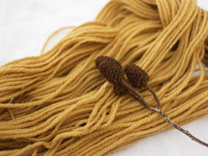 Shetland Aran – Alder (Natural dye) DISCONTINUED BASE