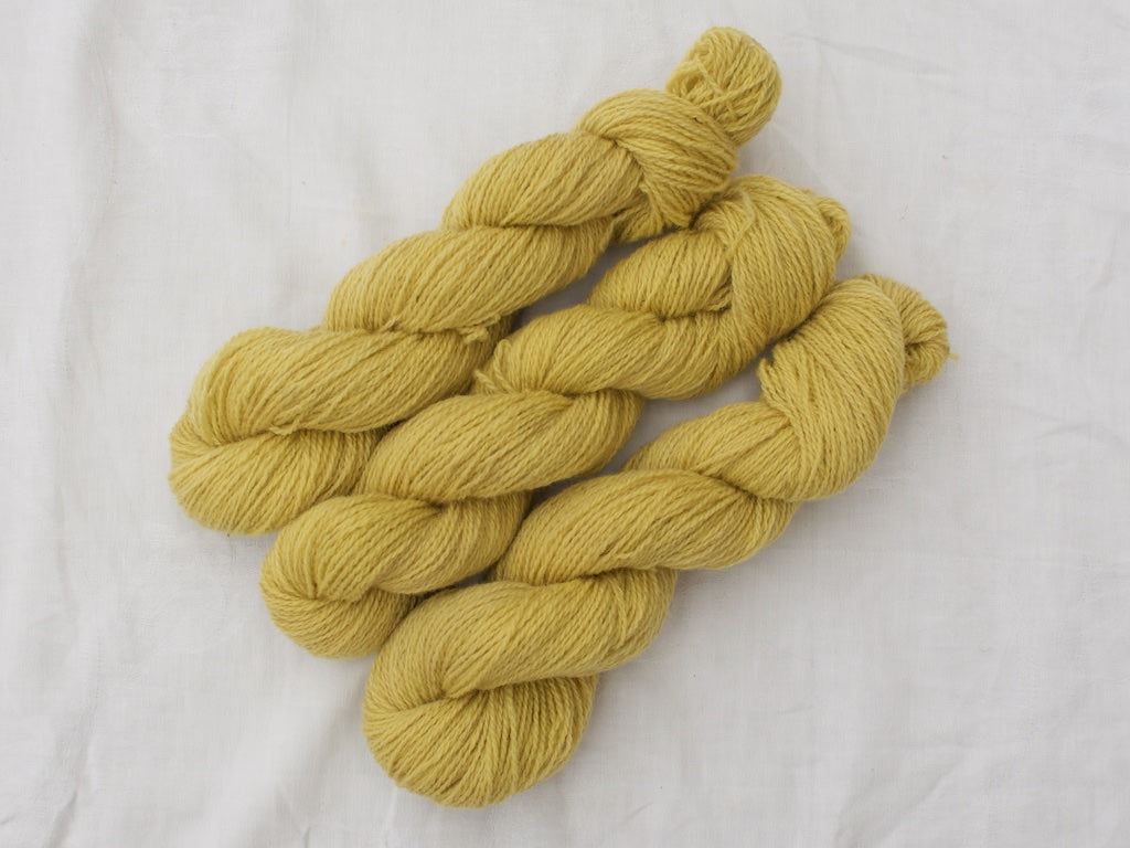 Mendip 4-Ply – Hollyhock (Natural dye)
