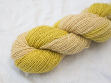 Load image into Gallery viewer, Mendip 4-Ply – Calendula variegated (Natural dye)