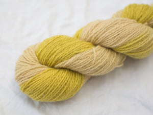 Mendip 4-Ply – Calendula variegated (Natural dye)