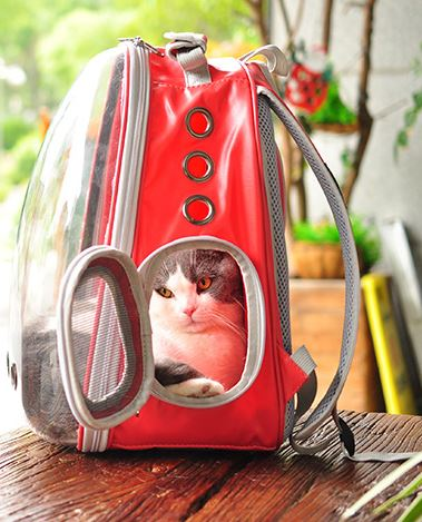 Cat Pet Backpack Out Portable Cage Home & Garden, Furniture / Pet Products / Cat Supplies - shop in usa - canada - UK - Spain - France - Germany - Netherlands - Sweden -