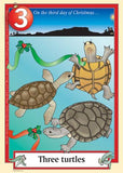 Australian Christmas endangered turtles