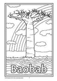 Black and white line drawing colouring in page showing Baobab tree with rainbow and clouds