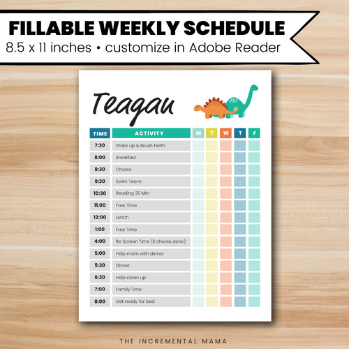 Dinosaurs Kid's Daily Schedule - Fillable Instant Download