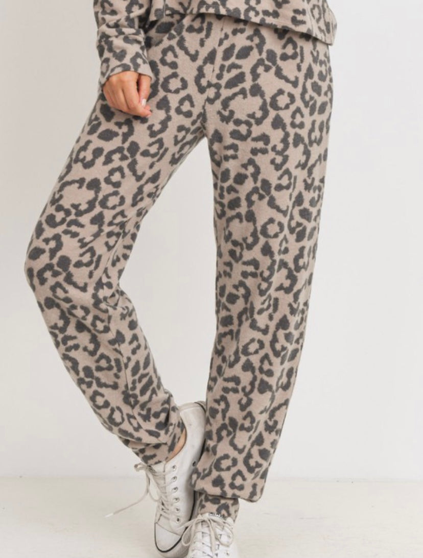 Animal Print Brushed Knit Hoodie Set