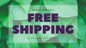 free shipping on orders over $25 fall special