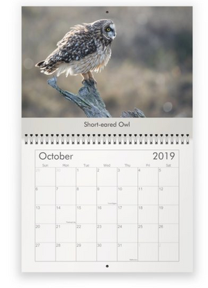 2019 Birds of British Columbia Calendar