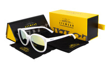 Load image into Gallery viewer, INVICTA SUNGLASSES PRO DIVER  I 24624-PRO-02
