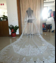 Load image into Gallery viewer, Best Selling Luxury Real Image Wedding Veils Three Meters Long Veils Lace Applique Crystals Two Layers Cathedral Length Cheap Bridal Veil