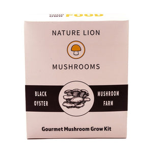 Grow Your Own Black Oyster Mushroom Farm