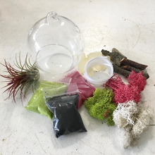 Load image into Gallery viewer, DIY Air Plant Hanging Globe Kit