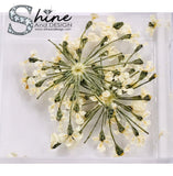 "SHINE- Organic Blossoms ""Mini Daisy Flowers"" Collection/ 12 Pcs - Pressed Flowers"