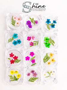 "SHINE- Organic Blossoms ""Tiny Florals"" Collection/ 12 Pcs - Pressed Flowers"