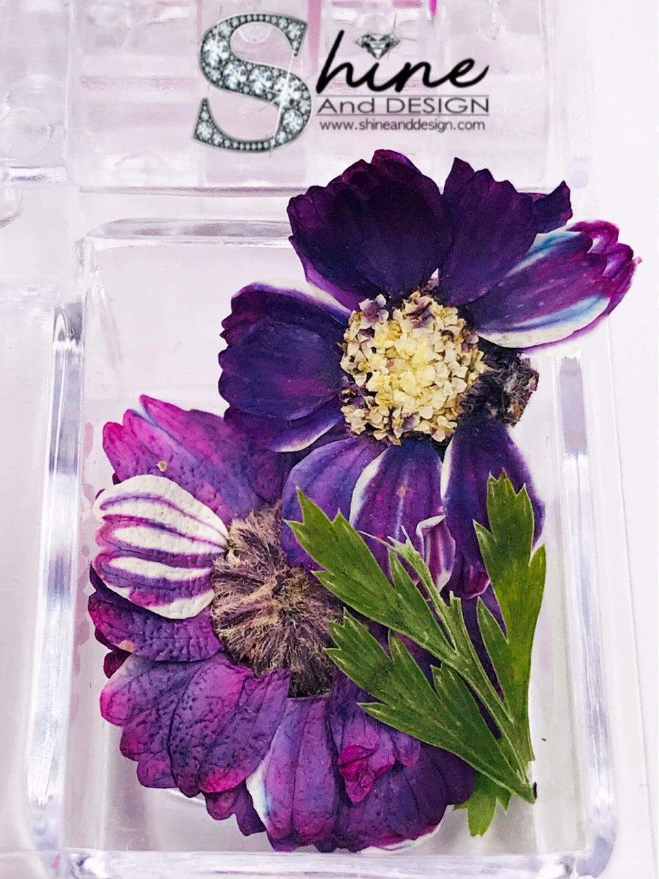 "SHINE- Organic Blossoms ""Botanical Bouquet"" Collection/ 12 Pcs - Pressed Flowers"
