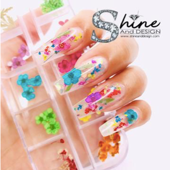 SHINE- Reusable Reverse Dual Form Nail Kit #111- Tips-1 00pcs- Box Set +5 Nail Clips+ Nail Art