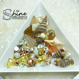 """By The Sea"" Crystals & Shell Decorations-#S2"