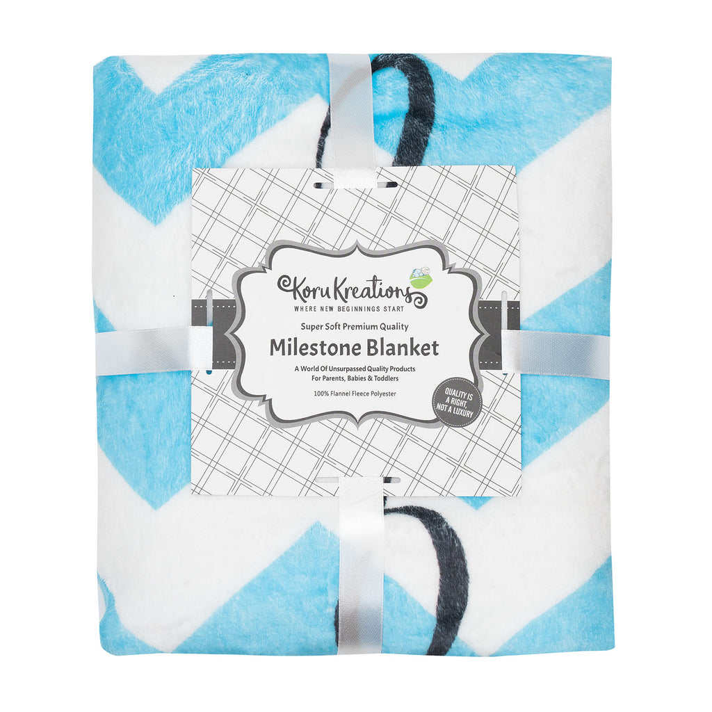 Baby Monthly Milestone Blanket 100% Quality Fleece Large