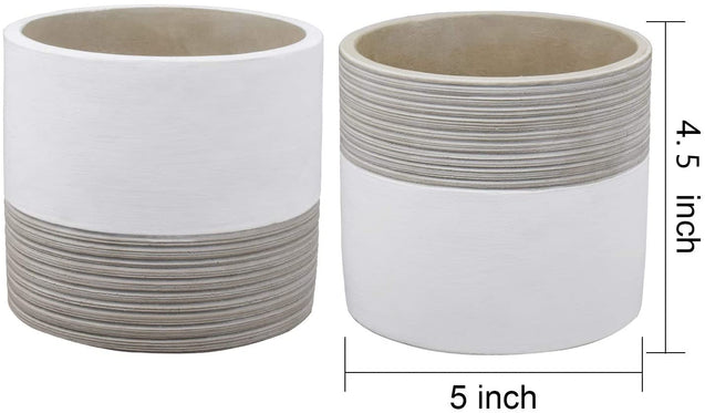 Brief Succulent Pots, 5 inch Diameter, 2 Pack