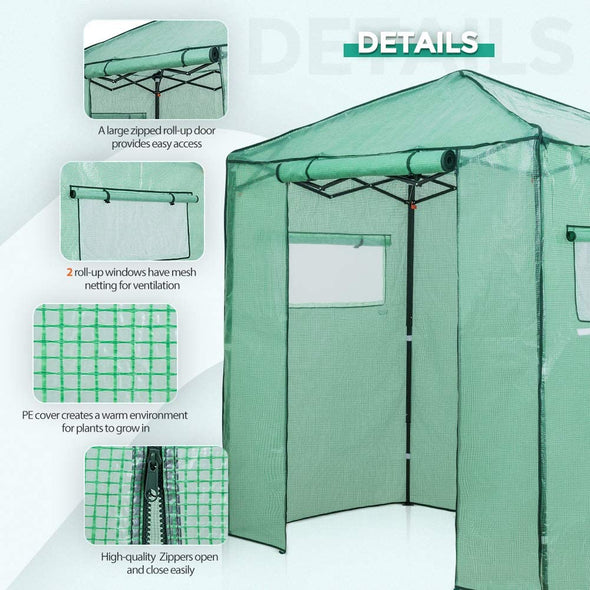 EAGLE PEAK Easy Fast Setup Instant 6'x4' Walk-in Indoor/Outdoor Greenhouse