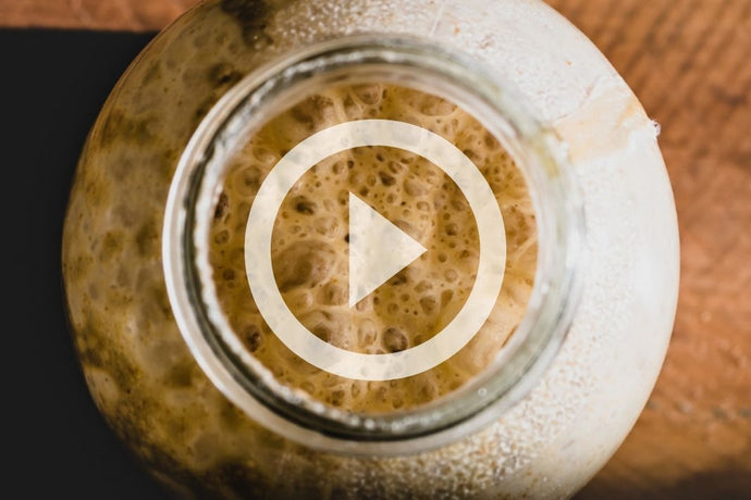 Watch: How to make a sourdough starter with Charles Good Food