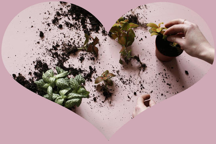 Unique and Sustainable Ideas for Valentine's Day