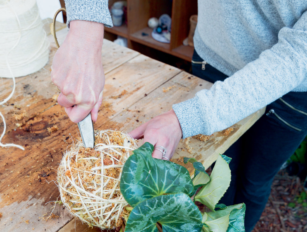Using scissors, the person pushes the string wrapped around the base of the kokedama into itself.