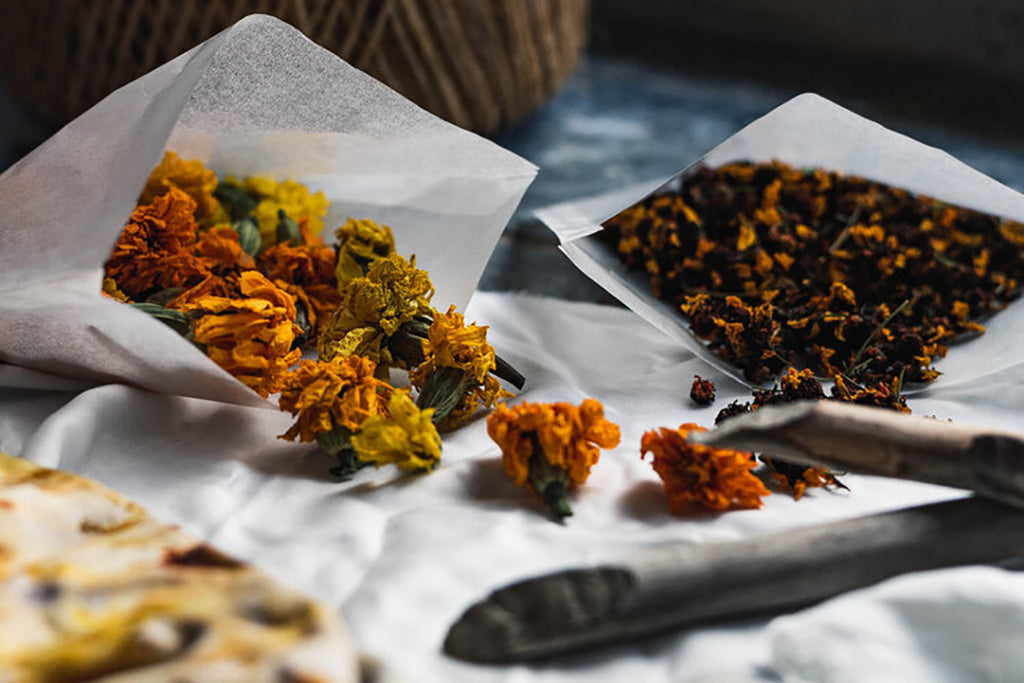 Dried plants for natural dyeing on a textile surface
