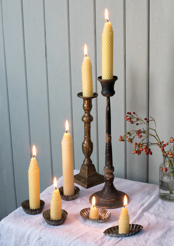 Beeswax candles on candle holders posed with holly
