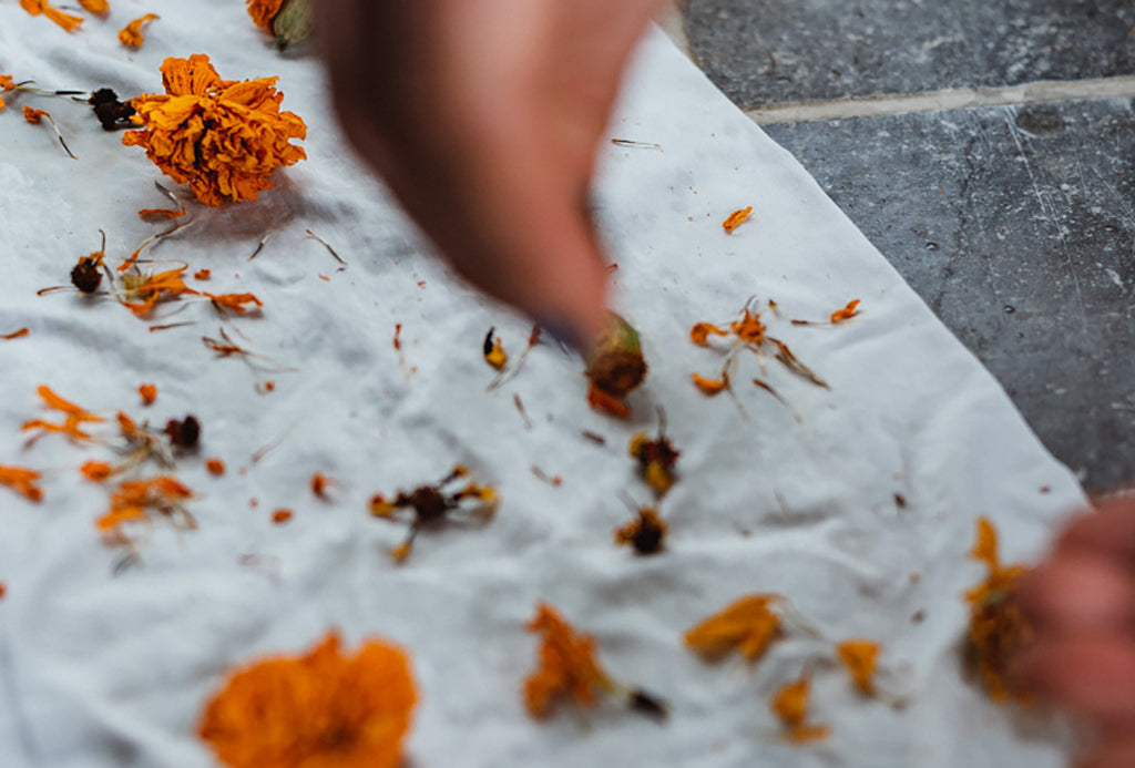 sprinkling dried flowers on white textile