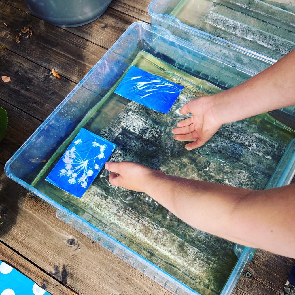 Creating a cyanotype
