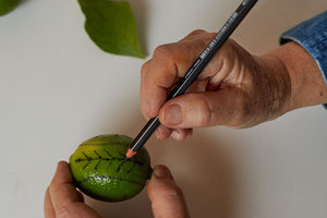 Drawing a design to linocut on a lime.