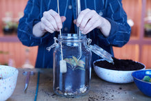 Load image into Gallery viewer, Make a household jar terrarium: Course + Kit