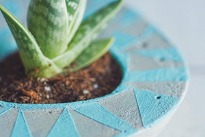 Close-up of asymmetric concrete planter with blue pattern.