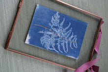 Load image into Gallery viewer, Learn how to make cyanotype prints & tray: Kit + Guide