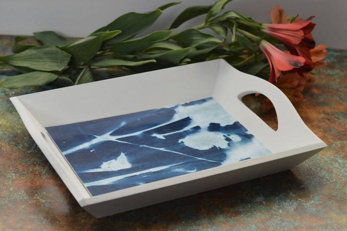 Learn how to make cyanotype prints & tray: Kit + Guide