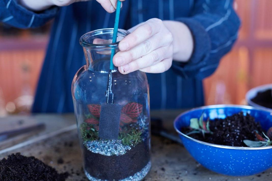 Make a tinyjohn terrarium: Course + Kit
