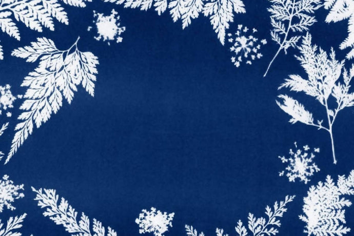 Make cyanotype Christmas cards: Kit + Guide