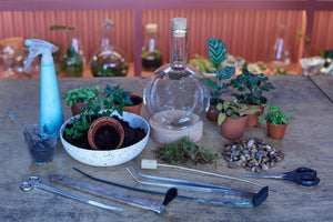 Make a Flask Terrarium