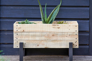 A wooden planter box with contrasting legs featuring succulents and placed against a wooden navy background.